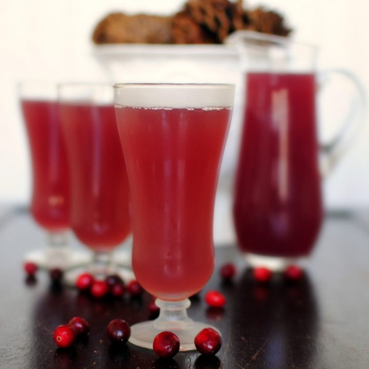 Cranberry Pomegranate Holiday Punch