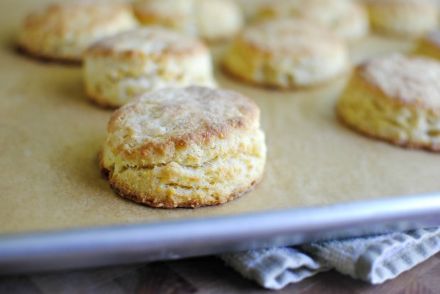 cornmeal buttermilk biscuits l simplyscratch.com