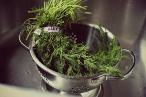 dill washed and drained