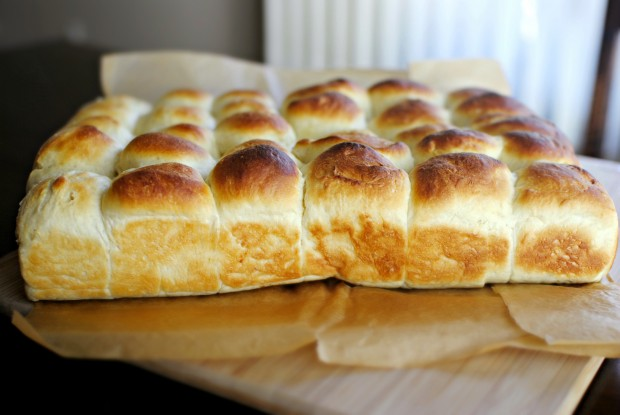 Simply Scratch Easy Homemade Dinner Rolls - Simply Scratch