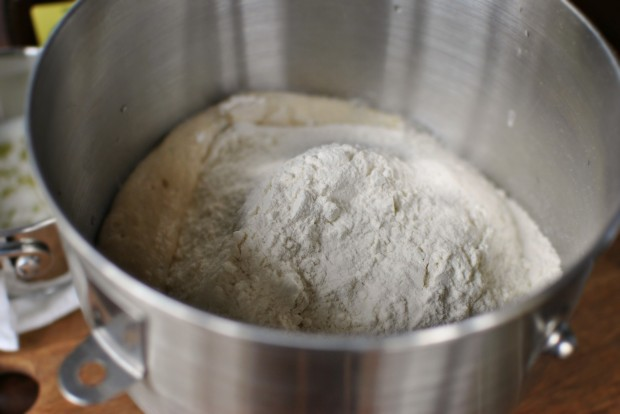 flour into yeast