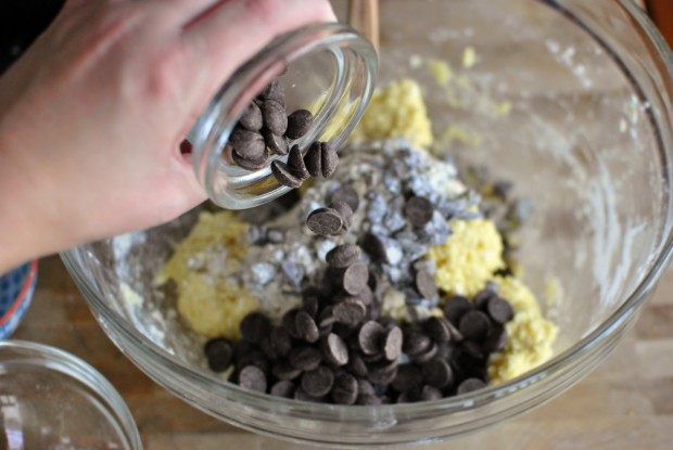 dark choc chips