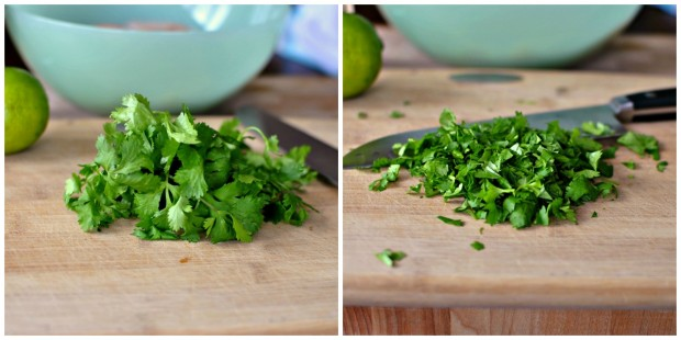 cilantro chopped