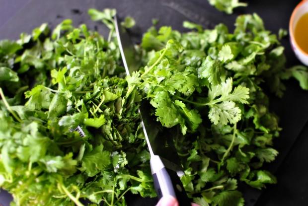 trimmin cilantro