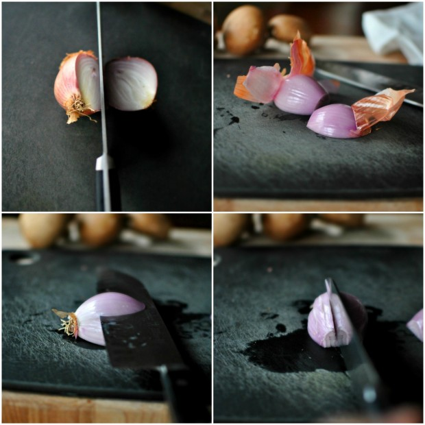 shallot collage