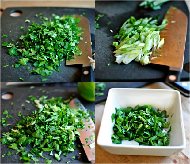 cilantro, parsely and green onion collage