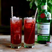 Pomegranate Gin & Tonic