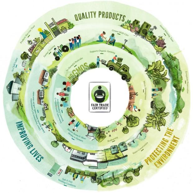 Fair Trade Infographic