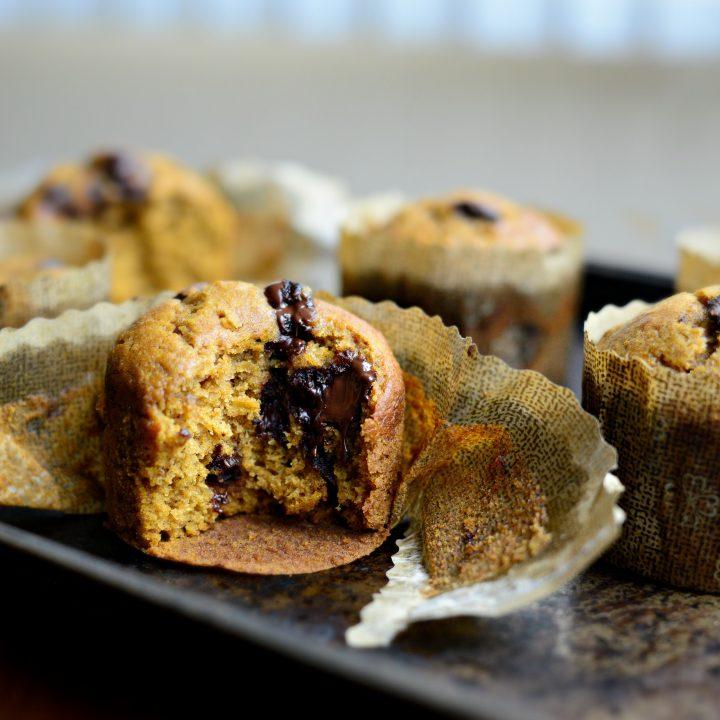 Pumpkin Dark Chocolate Muffins