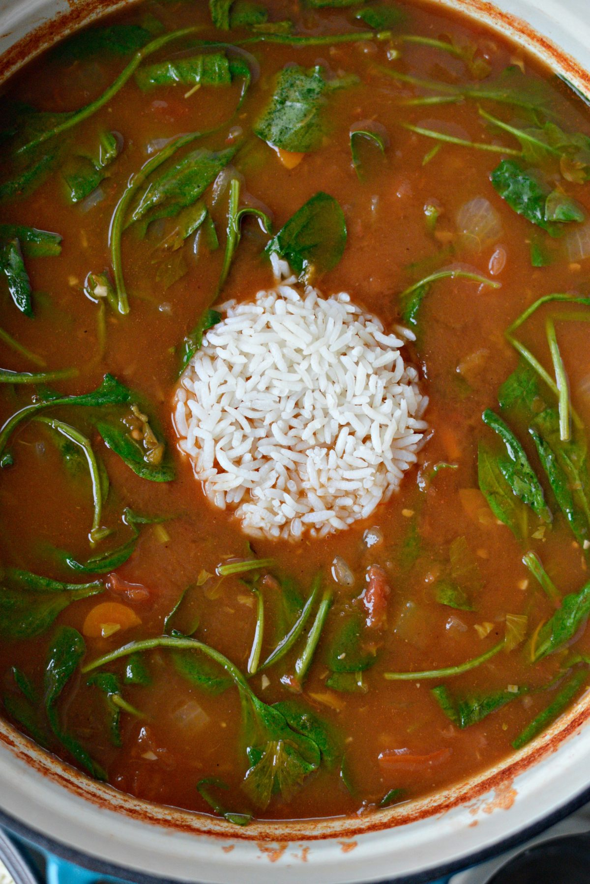 Tomato Florentine Soup with Rice l SimplyScratch.com (8)