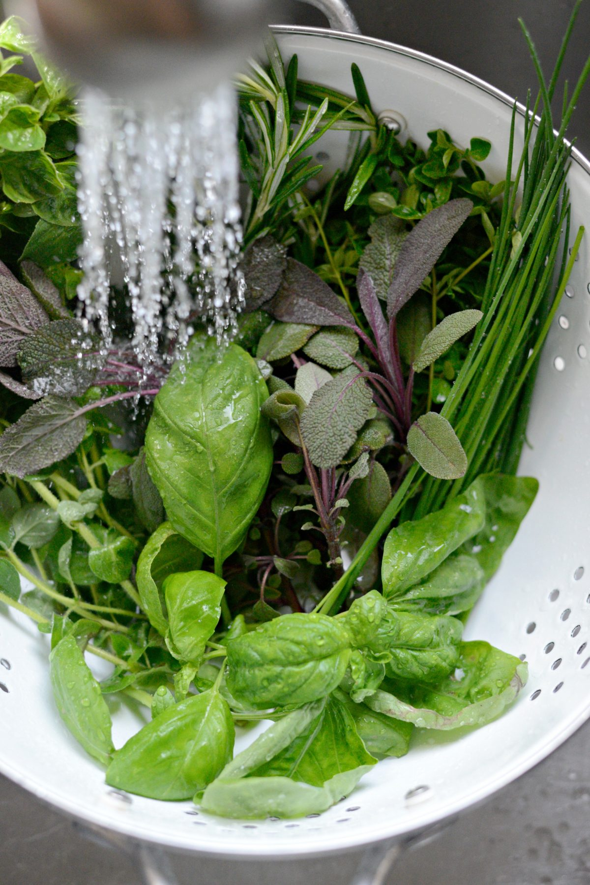 3 Ways to Freeze Herbs with Pampered Chef l SimplyScratch.com (2)