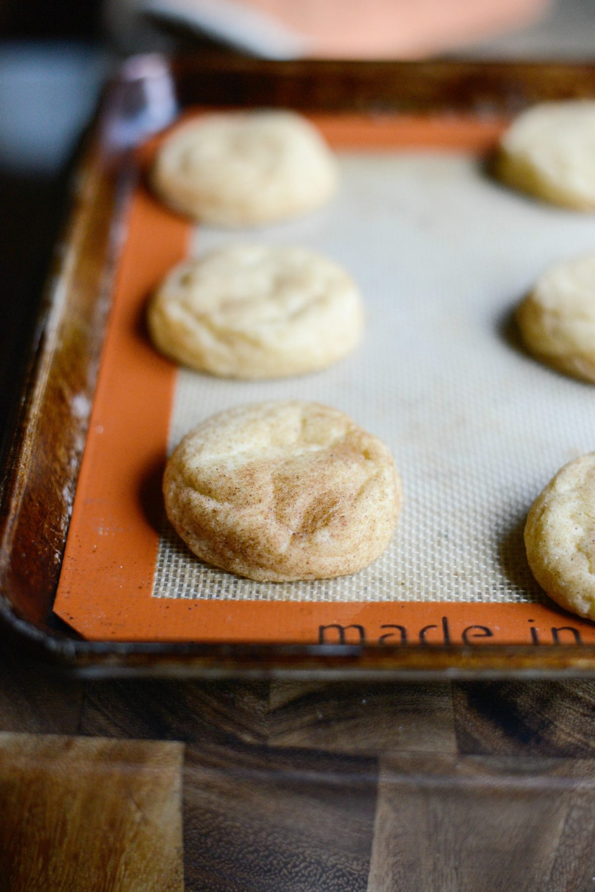 Snickerdoodles l SimplyScratch (10)