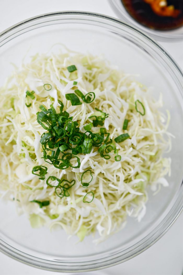 cabbage and green onion
